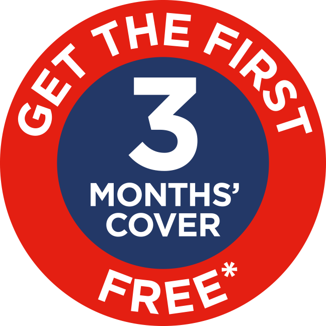 Get the first 3 months free*